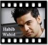 Habib Wahid