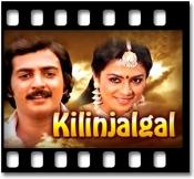 Vizhigal Meydaiyam Imaigal Thiraigalam - MP3