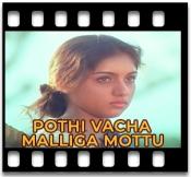 Pothi Vacha Malliga Mottu - MP3 + VIDEO